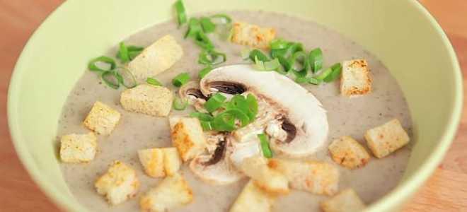 Как приготовить грибной суп пюре из шампиньонов: пошаговые рецепты