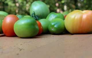 Как правильно хранить зеленые помидоры чтобы покраснели в домашних условиях