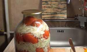 Рецепты заготовки помидоров с капустой на зиму