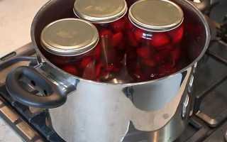 Как сварить компот из черешни: простые рецепты зимней заготовки