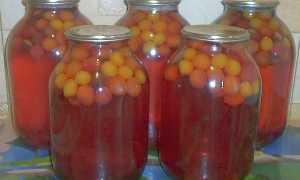 Как приготовить компот из алычи на зиму: подборка самых вкусных рецептов