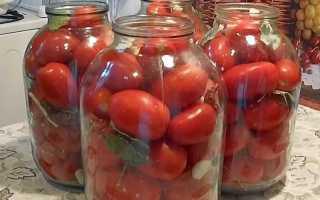 Рецепты приготовления помидоров с горчицей на зиму