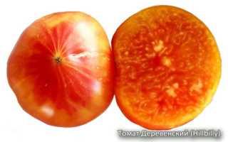 Описание сорта томата Деревенский: отзывы, условия выращивания