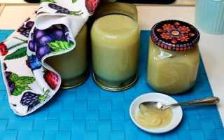 Рецепты заготовки пюре «Неженка» из яблок и сгущенки на зиму