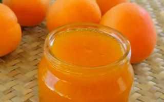 Как приготовить абрикосовое повидло на зиму: пошаговые рецепты