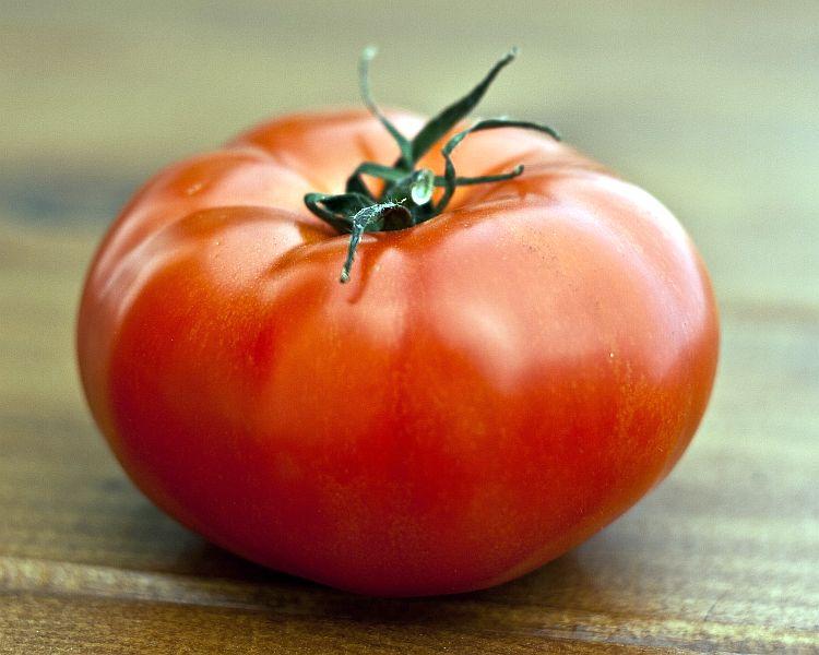 Томат Султан характеристика помидоров отзывы и урожайность с фото